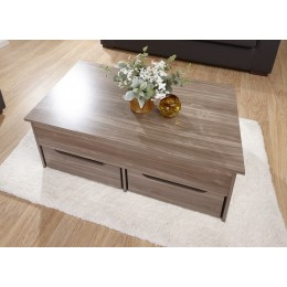 New Modern Ultimate Storage Coffee Table in Walnut